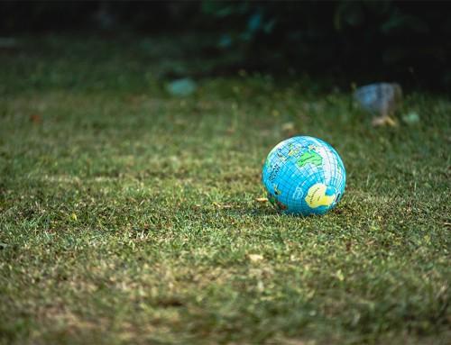 Newsletter: Global challenges